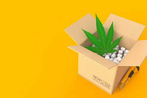 Essential Possibilities for the CBD Box Packaging: For Your Profit Only
